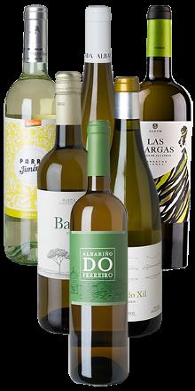 Vino-Blanco-Kennenlernpaket - 6er